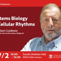 Systems Biology of  Cellular Rhythms