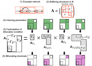 Structural Bifurcation Analysis in Chemical Reaction Networks thumbnail