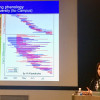 Report of iTHEMS colloquium - Tropical Rain Forest