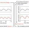 Non-sinusoidal Waveform in Temperature-Compensated Circadian Oscillations