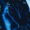 The shape of circadian rhythm, article on RIKEN Research by Drs. S. Gibo & G. Kurosawa