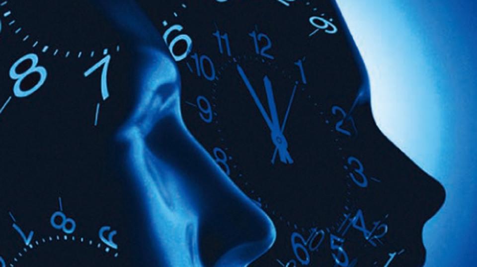 The shape of circadian rhythm, article on RIKEN Research by Drs. S. Gibo & G. Kurosawa