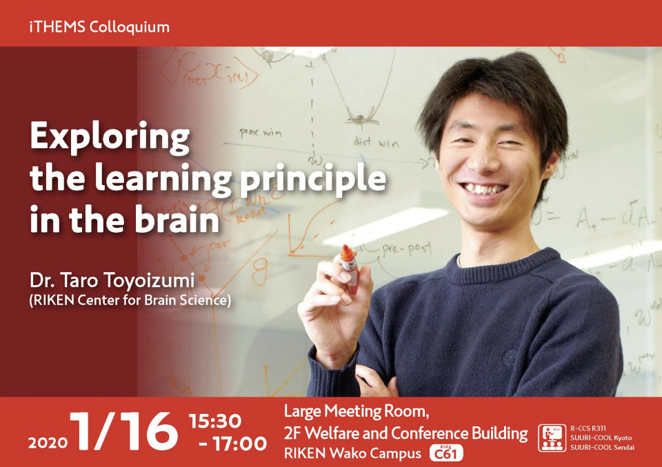 Exploring the learning principle in the brain image
