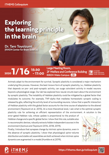 Exploring the learning principle in the brain ポスター