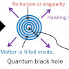Black Hole as a Quantum Field Configuration