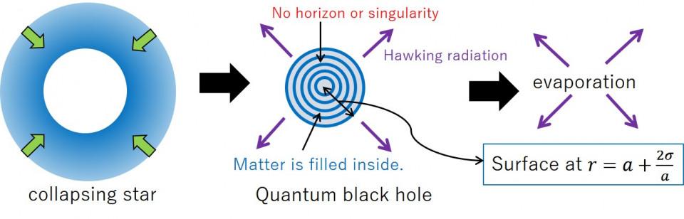 Black Hole as a Quantum Field Configuration