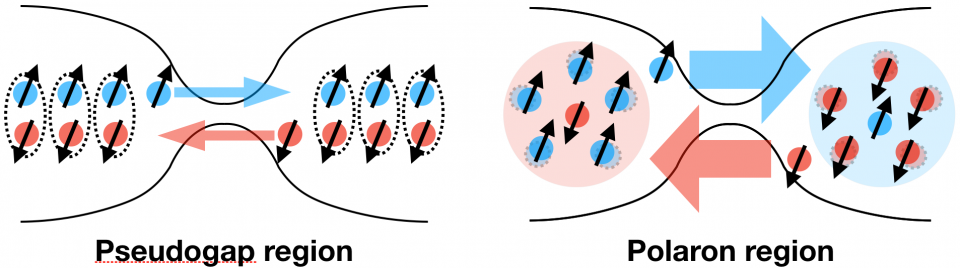 Mesoscopic spin transport between strongly interacting Fermi gases image