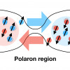 Mesoscopic spin transport between strongly interacting Fermi gases
