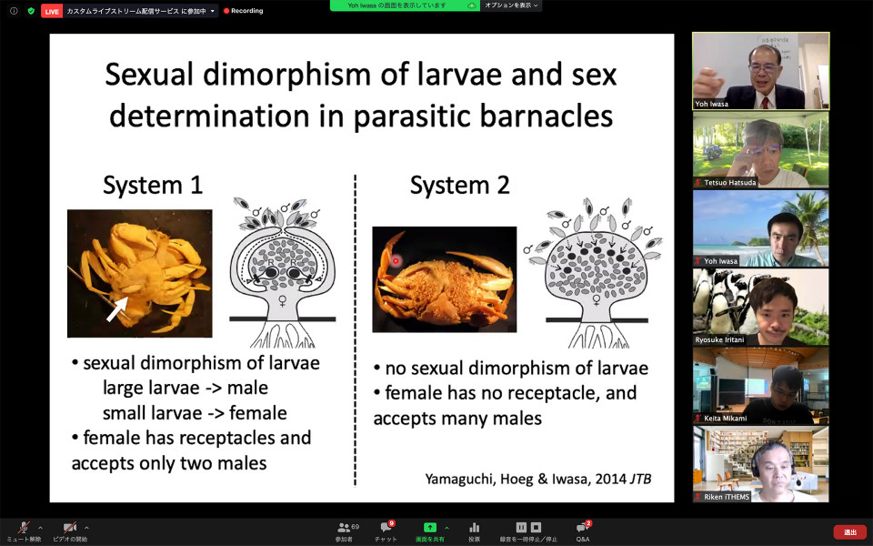 Report on iTHEMS Intensive Course by Dr. Yoh Iwasa - Sex expression and sex allocation of marine organisms image