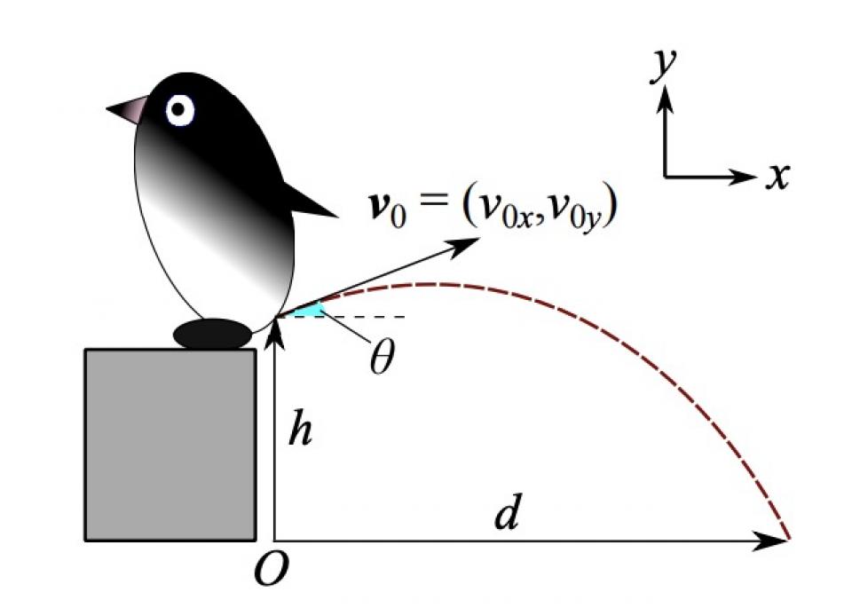 Anew Calculation of Penguin Pooing Pressure by Hiroyuki Tajima