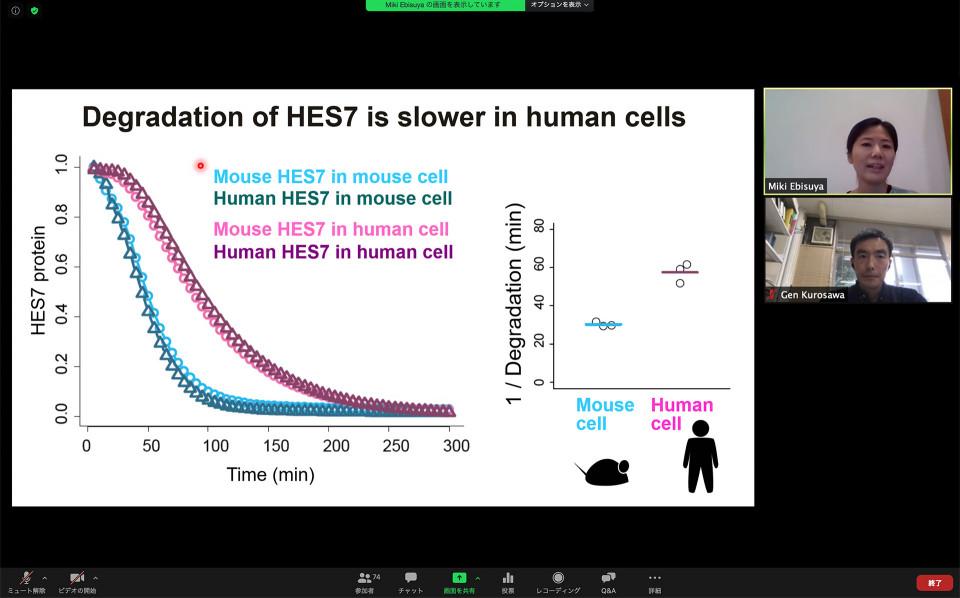 Biology Seminar by Dr. Miki Ebisuya on July 17, 2020 image