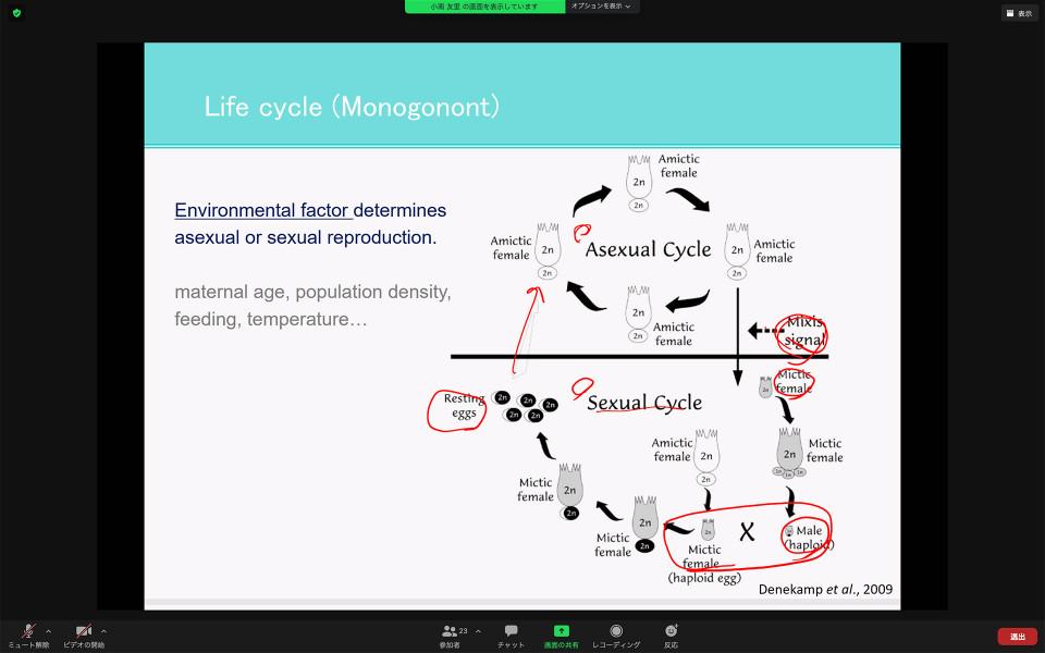 Biology Seminar by Dr. Yuri Kominami on November 27, 2020 image