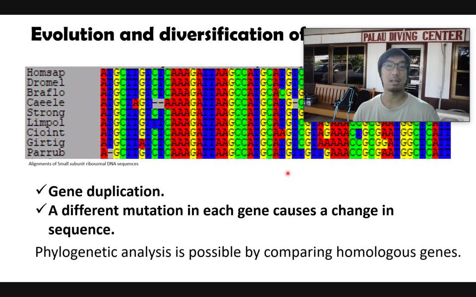 iTHEMS Biology Seminar by Dr. Euki Yazaki on September 9, 2021 image